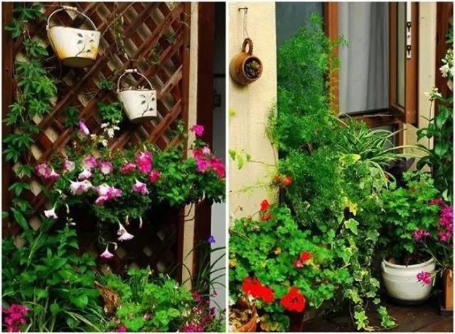 Lối vào nhà được bố trí trồng hoa.