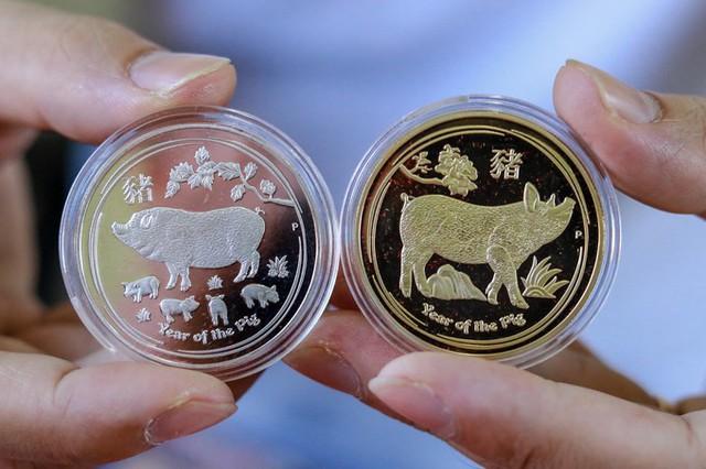 """Cặp đồng xu mạ vàng và bạc có xuất xứ từ Australia với dòng chữ """"Year of the pig"""" (Năm con heo)."""