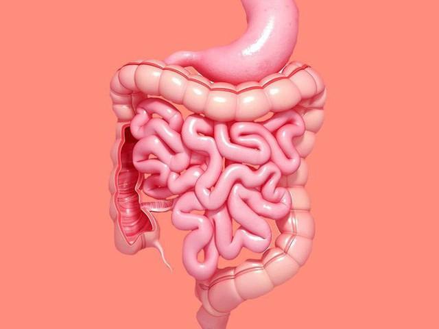 Đông y Trị liệu: Hướng dẫn cách xoa bụng dưỡng sinh và hỗ trợ chữa bệnh ở hệ tiêu hóa - Ảnh 1.