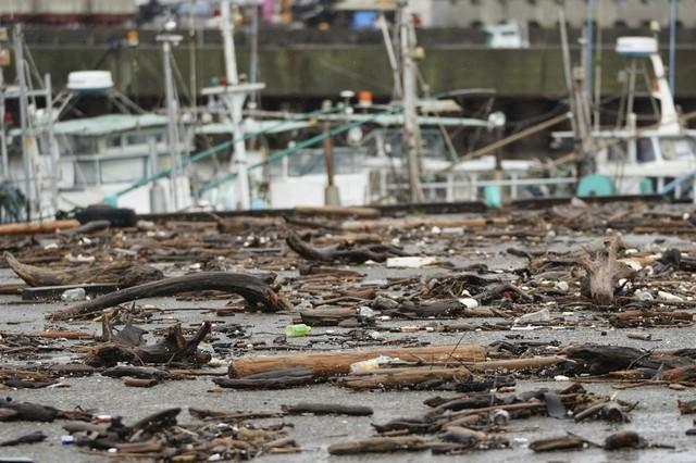 Siêu bão châu Á Hagibis mạnh nhất thế kỷ xé tan nát nhà cửa, phá hủy xe sang và cuốn trôi người - Ảnh 4.