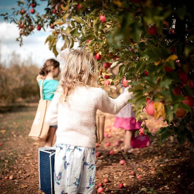 Gia đình 5 người quyết tâm không trở lại thành phố vì quá yêu thích cuộc sống nhà vườn ở nông thôn - Ảnh 24.