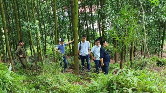 Sự thật về cái chết của một Phó chủ tịch UBND xã ở Bắc Giang - Ảnh 1.