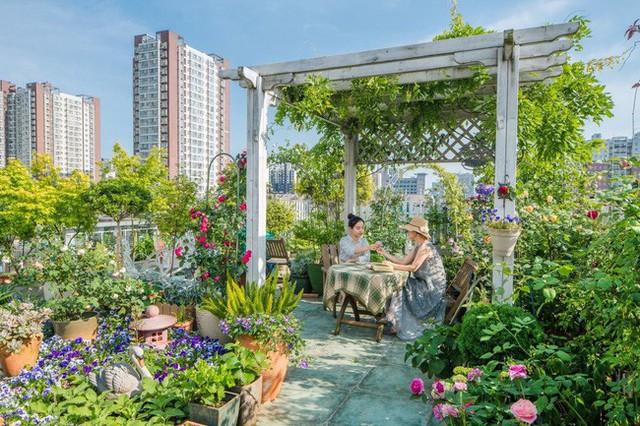 Tận dụng mái nhà bỏ hoang, người phụ nữ 45 tuổi đã biến toàn bộ không gian thành khu vườn địa đàng - Ảnh 2.