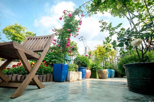 Tận dụng mái nhà bỏ hoang, người phụ nữ 45 tuổi đã biến toàn bộ không gian thành khu vườn địa đàng - Ảnh 13.
