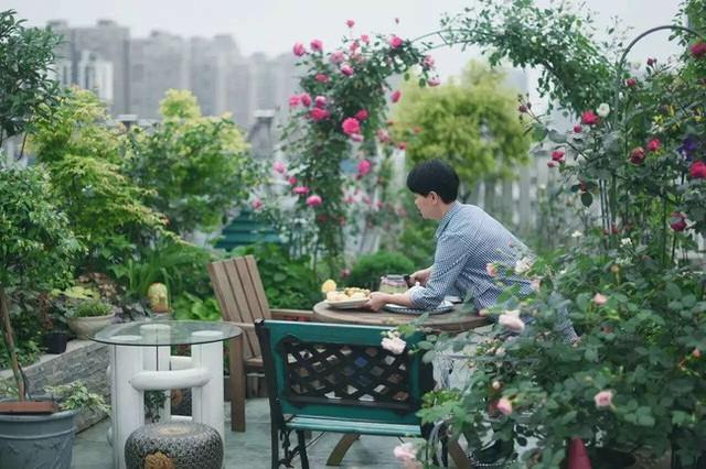 Tận dụng mái nhà bỏ hoang, người phụ nữ 45 tuổi đã biến toàn bộ không gian thành khu vườn địa đàng - Ảnh 14.