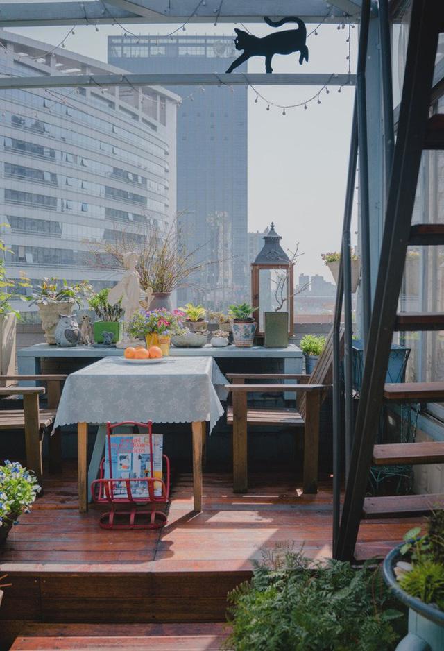 Tận dụng mái nhà bỏ hoang, người phụ nữ 45 tuổi đã biến toàn bộ không gian thành khu vườn địa đàng - Ảnh 18.