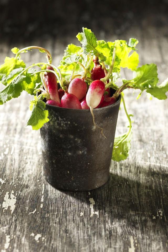 10 loại cây trồng hoàn hảo dành cho những ai lần đầu muốn làm vườn trong nhà - Ảnh 9.