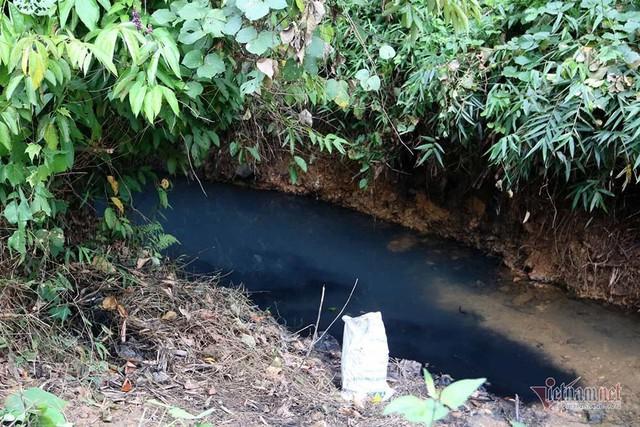 Mùi khủng khiếp ở đồi Mông, nơi xả thải xuống nhà máy nước sông Đà - Ảnh 1.