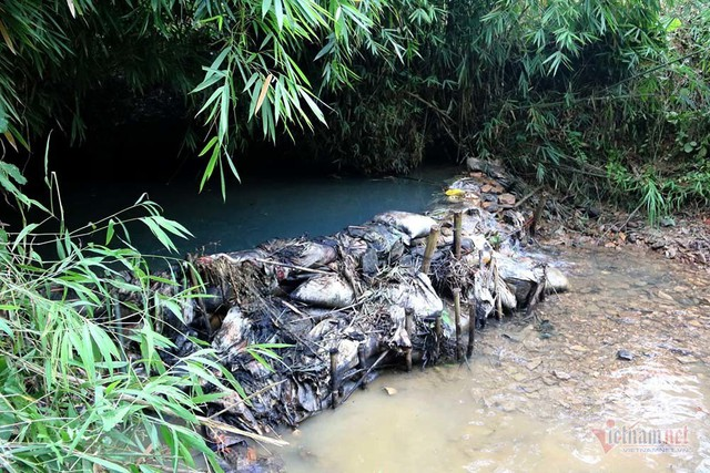 Mùi khủng khiếp ở đồi Mông, nơi xả thải xuống nhà máy nước sông Đà - Ảnh 20.