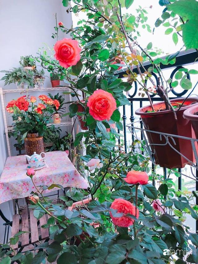 Ngày 20/10 ghé thăm không gian sống quanh năm thơm ngát hương hoa của người phụ nữ Hà Thành - Ảnh 3.
