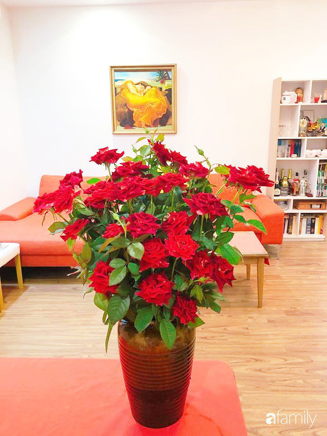 Ngày 20/10 ghé thăm không gian sống quanh năm thơm ngát hương hoa của người phụ nữ Hà Thành - Ảnh 29.