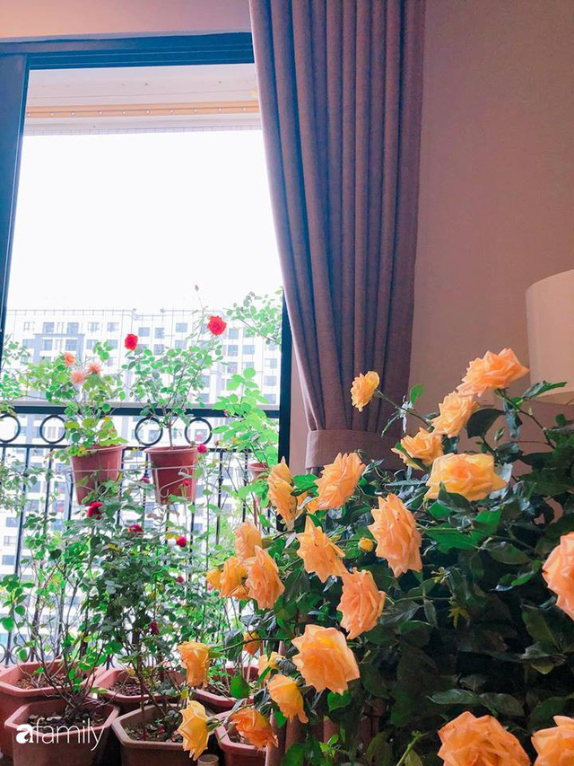 Ngày 20/10 ghé thăm không gian sống quanh năm thơm ngát hương hoa của người phụ nữ Hà Thành - Ảnh 4.