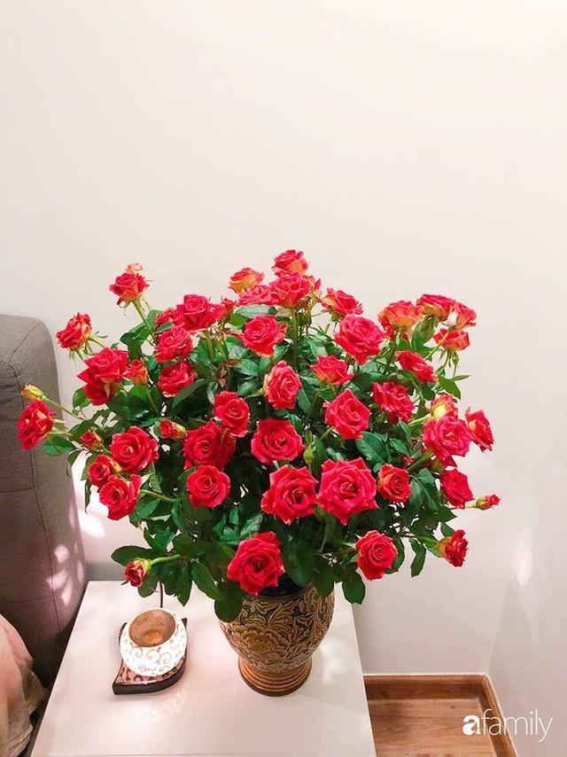 Ngày 20/10 ghé thăm không gian sống quanh năm thơm ngát hương hoa của người phụ nữ Hà Thành - Ảnh 37.