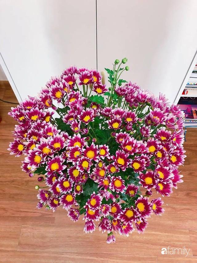 Ngày 20/10 ghé thăm không gian sống quanh năm thơm ngát hương hoa của người phụ nữ Hà Thành - Ảnh 44.