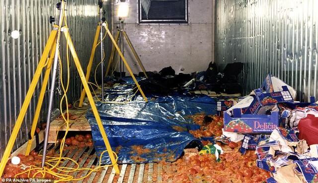 Hình ảnh chấn động vụ 58 người TQ chết trong xe cà chua ở Anh - Ảnh 1.