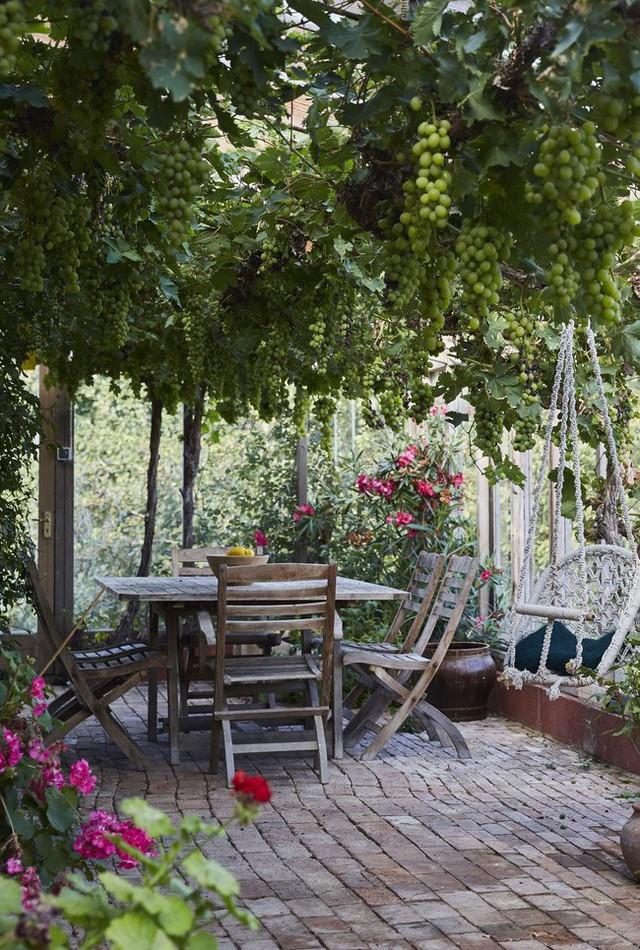 Dù chỉ sở hữu một không gian nhỏ xíu vẫn có vô vàn cách sáng tạo để trồng cây xanh - Ảnh 1.