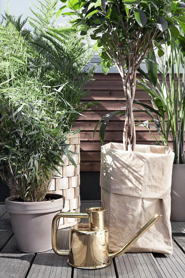 Dù chỉ sở hữu một không gian nhỏ xíu vẫn có vô vàn cách sáng tạo để trồng cây xanh - Ảnh 2.