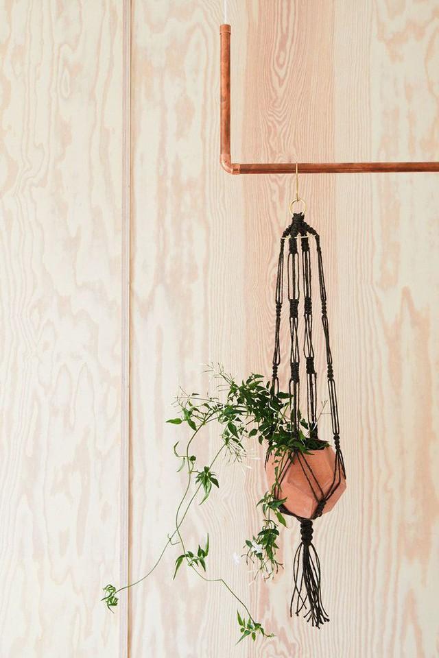 Dù chỉ sở hữu một không gian nhỏ xíu vẫn có vô vàn cách sáng tạo để trồng cây xanh - Ảnh 4.