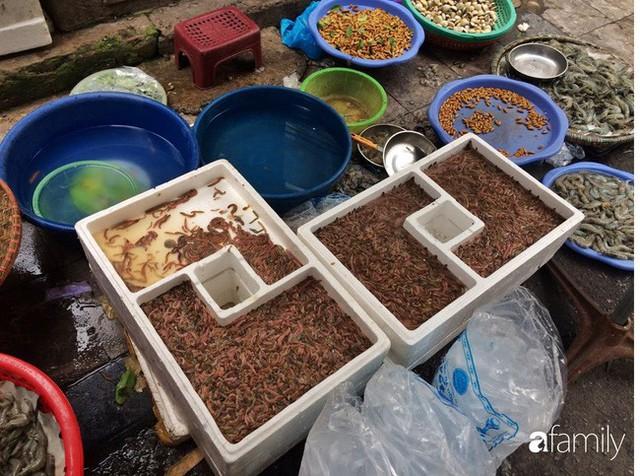 Mùa rươi đến người tiêu dùng Hà Nội lại thi nhau ghé qua khu chợ này, giá tuy cao nhưng vẫn tấp nập người mua  - Ảnh 9.