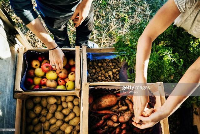 10 điều ai cũng có thể làm ngay từ hôm nay để mua sắm đi đôi với thân thiện môi trường - Ảnh 9.