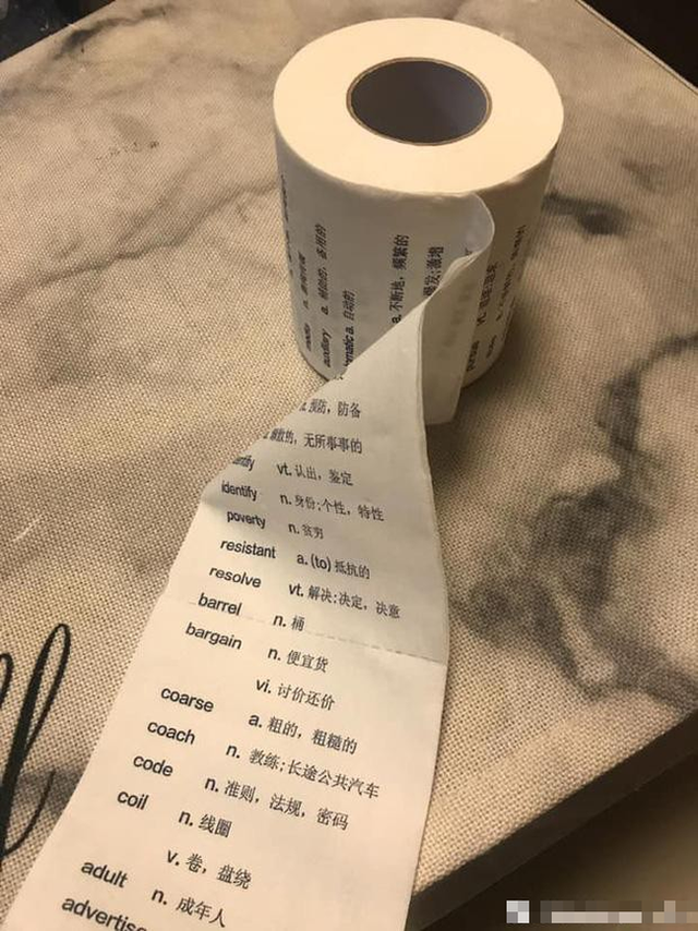 Ở Việt Nam thì bình thường nhưng giấy vệ sinh tại nước ngoài lại muôn hình vạn trạng thu hút khách hàng, có loại lên tới 34 tỷ đồng/cuộn - Ảnh 10.
