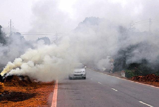 Chuyên gia chỉ ra các biểu hiện bộ phận cơ thể bị khói bụi làm gây bệnh và cách bảo vệ - Ảnh 2.