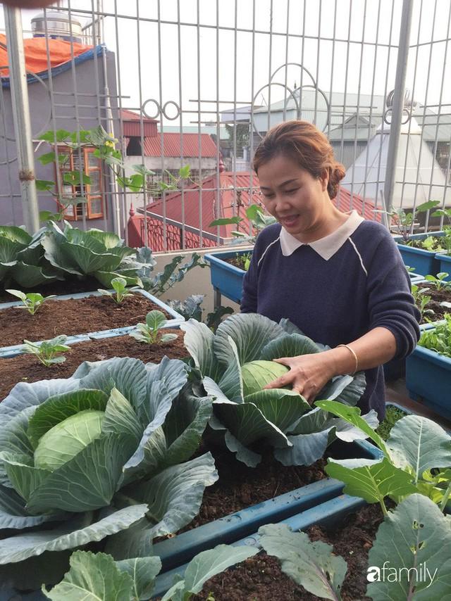 Kinh nghiệm trồng rau quả tốt tươi, bội thu trên sân thượng của mẹ đảm ở Hà Nội - Ảnh 1.