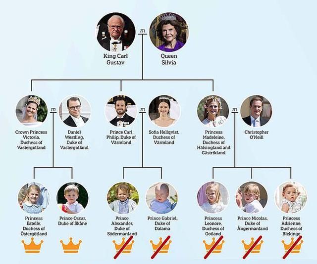 Quốc vương Thụy Điển rút tước hiệu hoàng tộc của 5 cháu - Ảnh 4.