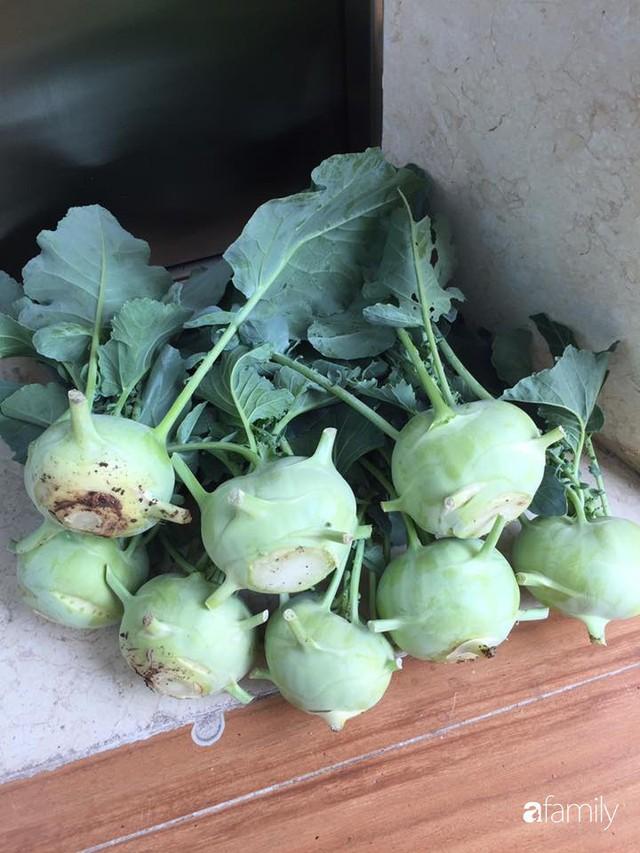 Kinh nghiệm trồng rau quả tốt tươi, bội thu trên sân thượng của mẹ đảm ở Hà Nội - Ảnh 25.