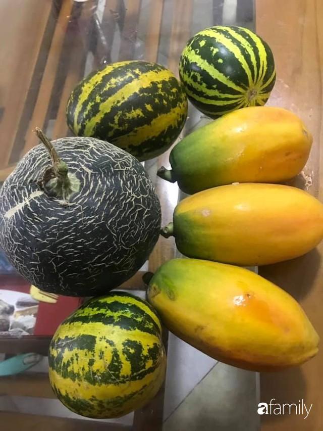 Kinh nghiệm trồng rau quả tốt tươi, bội thu trên sân thượng của mẹ đảm ở Hà Nội - Ảnh 36.