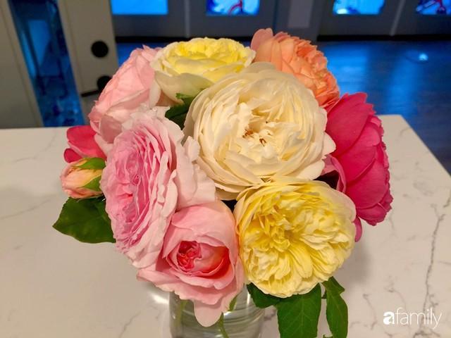 Mẹ Việt dồn hết tâm huyết để biến góc nhỏ trong vườn trở thành khu vườn hồng đẹp ngọt ngào - Ảnh 17.