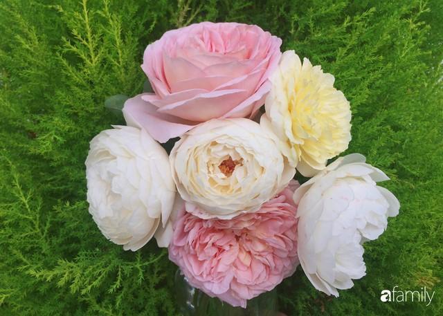 Mẹ Việt dồn hết tâm huyết để biến góc nhỏ trong vườn trở thành khu vườn hồng đẹp ngọt ngào - Ảnh 18.