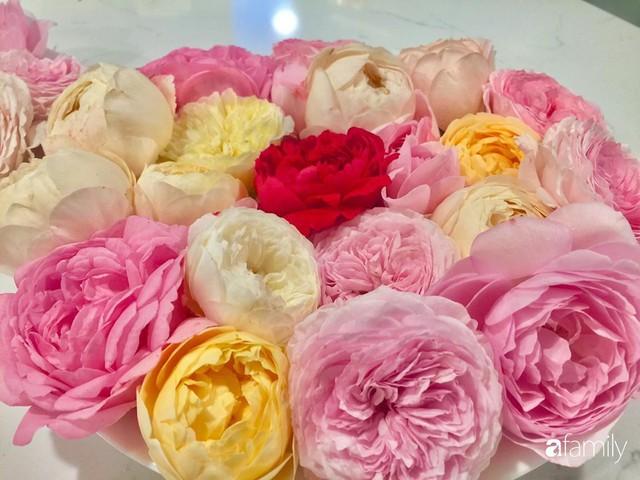 Mẹ Việt dồn hết tâm huyết để biến góc nhỏ trong vườn trở thành khu vườn hồng đẹp ngọt ngào - Ảnh 19.