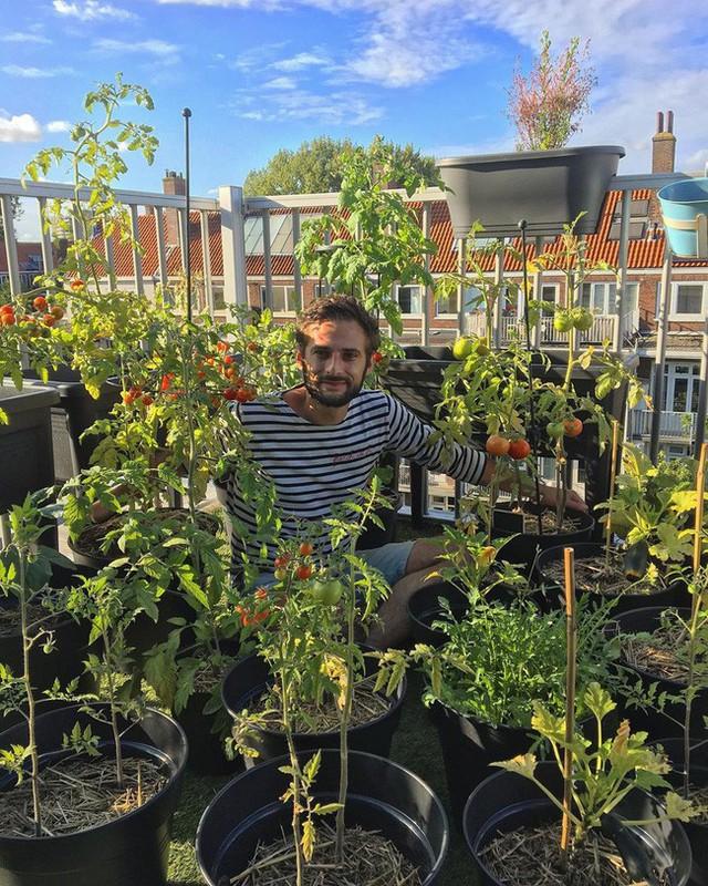 Anh chàng điển trai khiến hàng nghìn cô gái ngưỡng mộ khi trồng cả một sân thượng rau quả xanh tươi - Ảnh 1.