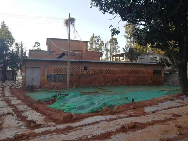 Nữ phóng viên từ bỏ công việc để cải tạo nhà xưởng cũ đã bị phá hủy thành ngôi nhà hoa rộng 600m² - Ảnh 8.