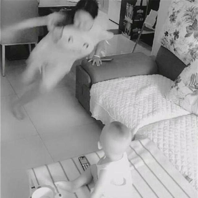 Bị vợ lạnh nhạt, chồng đặt camera theo dõi và bật khóc khi xem hình - Ảnh 2.