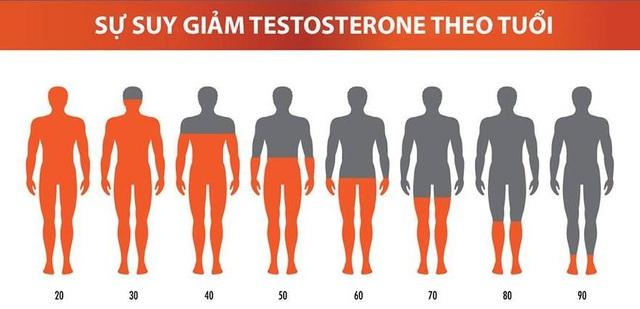 Mất cân bằng nội tiết tố ở nam giới - Ảnh 1.
