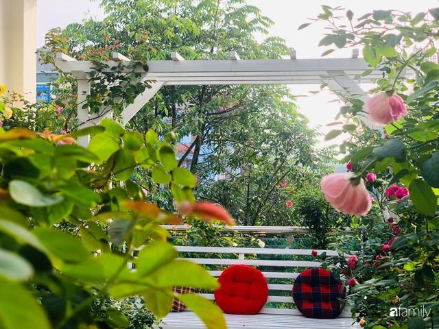 Ngày 20/11 ghé thăm vườn hồng trên sân thượng khoe sắc rực rỡ của cô giáo dạy nhạc xứ Thanh - Ảnh 27.