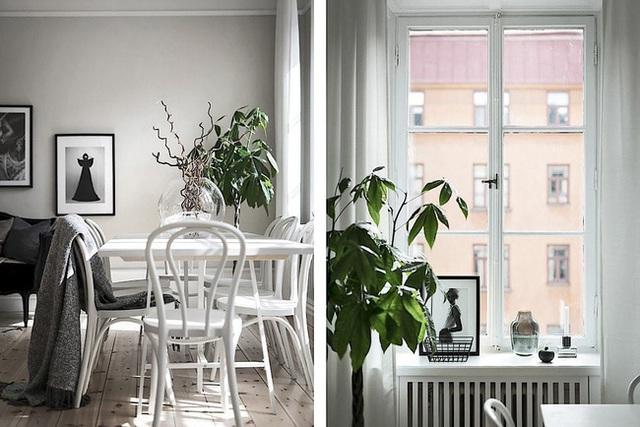 Căn hộ rộng 62m² sử dụng màu trắng là chủ yếu nhưng chẳng hề nhàm chán nhờ cách trang trí có tính thẩm mỹ cao - Ảnh 3.