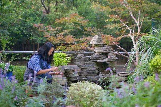 Khu vườn của người phụ nữ ở ẩn từ tuổi 40  - Ảnh 3.