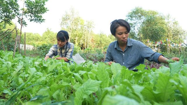 Hai cô gái trẻ bỏ công việc lên rừng làm nông nghiệp thuận tự nhiên - Ảnh 1.