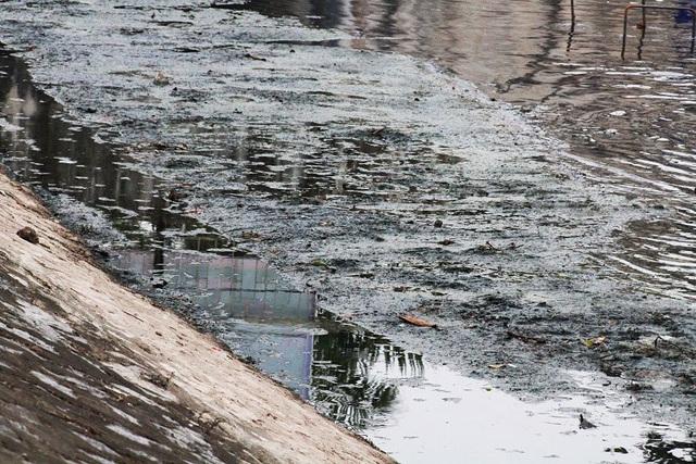 Hồi sinh sông Tô Lịch: Dân không quan tâm chỉ số, chỉ mong hết mùi hôi - Ảnh 1.