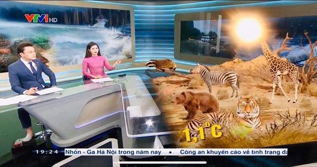 Biên tập viên Hữu Bằng lộ ảnh đi chân đất trên sóng truyền hình - Ảnh 1.
