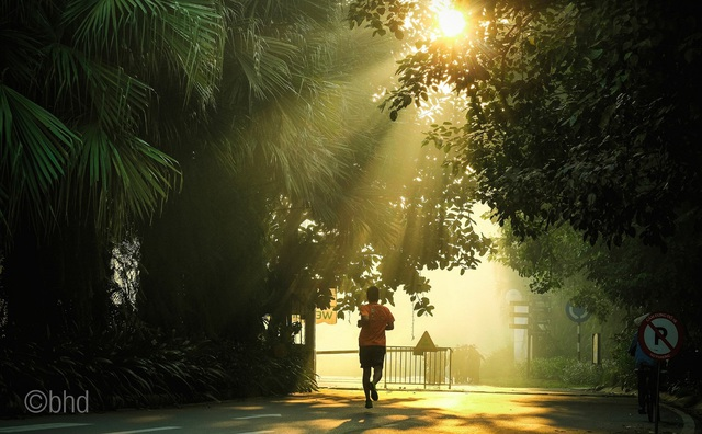 Ecopark Marathon – Chạy giữa miền xanh - Ảnh 11.
