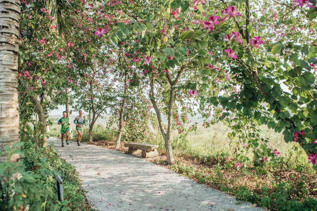 Ecopark Marathon – Chạy giữa miền xanh - Ảnh 6.