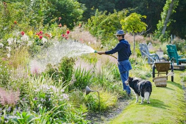 Cặp vợ chồng trẻ dành 5 năm để biến khu đất hoang rộng 6000m² thành khu vườn thiên đường của cỏ cây, hoa lá - Ảnh 4.
