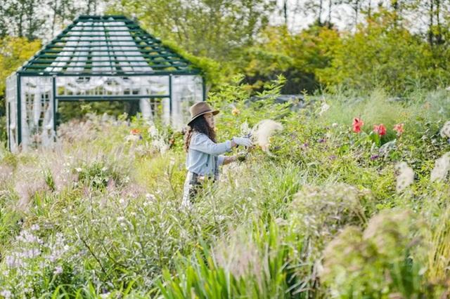 Cặp vợ chồng trẻ dành 5 năm để biến khu đất hoang rộng 6000m² thành khu vườn thiên đường của cỏ cây, hoa lá - Ảnh 24.