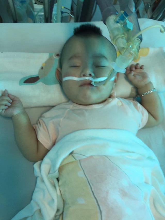 Sự sống mong manh của bé 14 tháng bị nhược cơ phải thở máy gần năm trời - Ảnh 3.