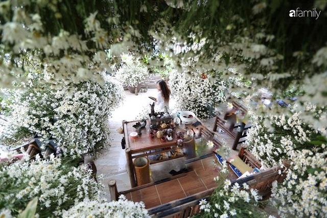Ngắm triệu bông cúc họa mi khoe sắc dịu dàng, tinh khôi trên sân thượng của hai người phụ nữ dịu dàng - Ảnh 2.