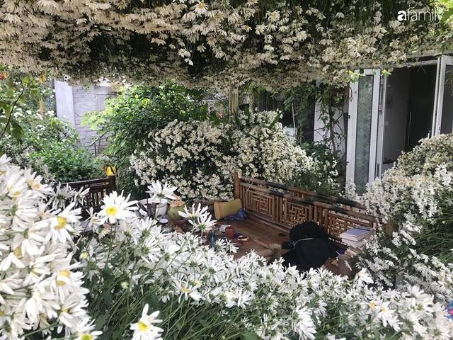 Ngắm triệu bông cúc họa mi khoe sắc dịu dàng, tinh khôi trên sân thượng của hai người phụ nữ dịu dàng - Ảnh 11.